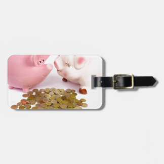 Two piggy banks with euro coins on white luggage tag