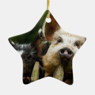 Two pigs - pig farm - pork farms ceramic ornament