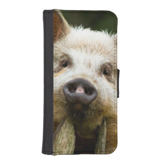 Two pigs - pig farm - pork farms iPhone SE/5/5s wallet case