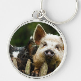Two pigs - pig farm - pork farms keychain