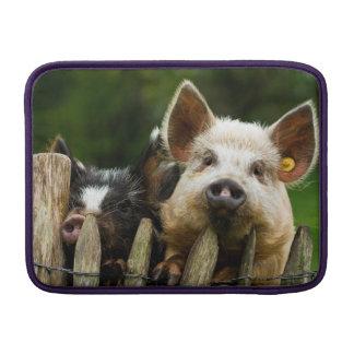 Two pigs - pig farm - pork farms MacBook sleeve