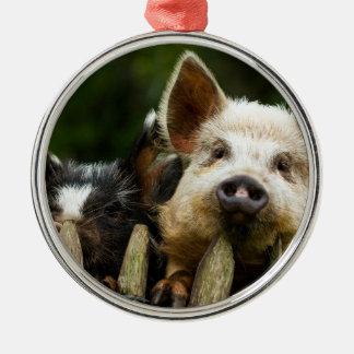Two pigs - pig farm - pork farms metal ornament