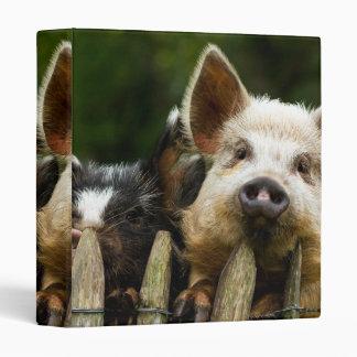 Two pigs - pig farm - pork farms vinyl binder