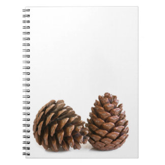 Two pinecones notebook