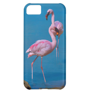 Two Pink Flamingos in Blue Water Case For iPhone 5C