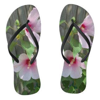 two pink hibiscus flowers on flip flips flip flops