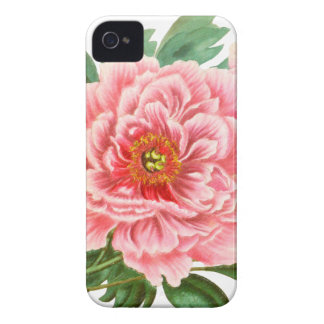 Two Pink Peonies iPhone 4 Case