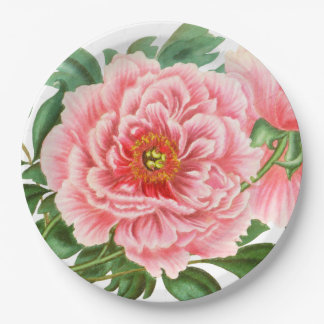 Two Pink Peonies Paper Plate