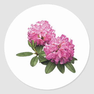 Two Pink Rhododendrons Round Sticker