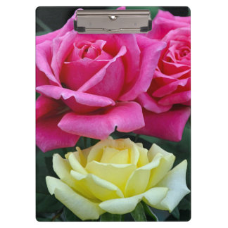Two pink roses clipboard