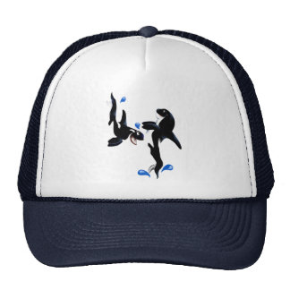 Two Playful Orcas Hat
