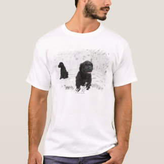 Two Portuguese Water Dog puppies in a room T-Shirt