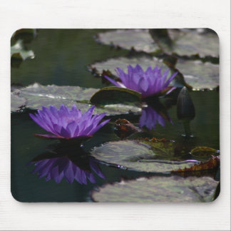 Two Purple Lotus Waterlilies mouse pad
