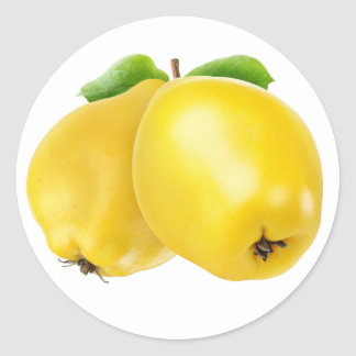 Two quince fruits classic round sticker