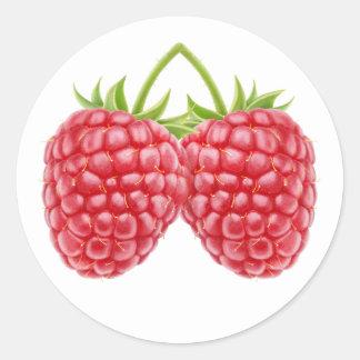 Two raspberries classic round sticker