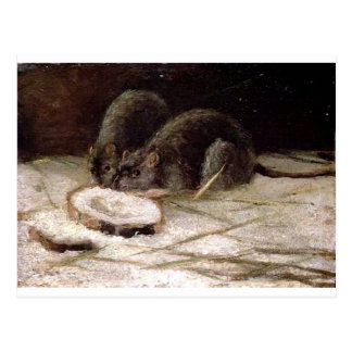 Two Rats by Vincent van Gogh Postcard
