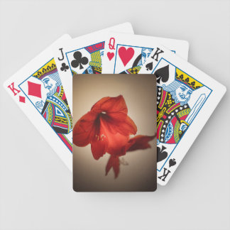 Two red amaryllis flowers bicycle playing cards