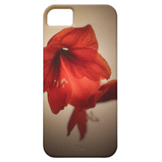 Two red amaryllis flowers case for the iPhone 5