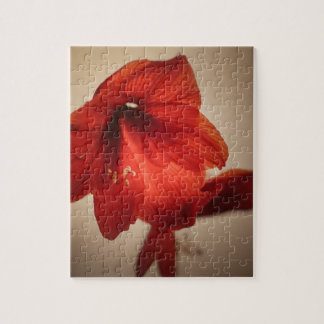 Two red amaryllis flowers jigsaw puzzle