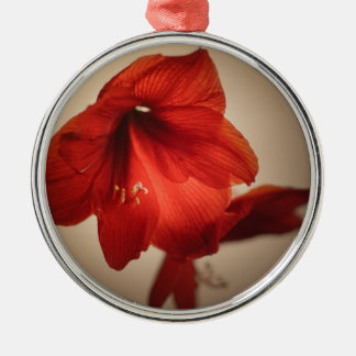 Two red amaryllis flowers metal ornament