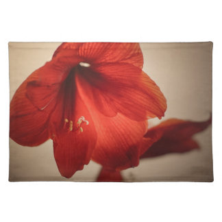 Two red amaryllis flowers placemat