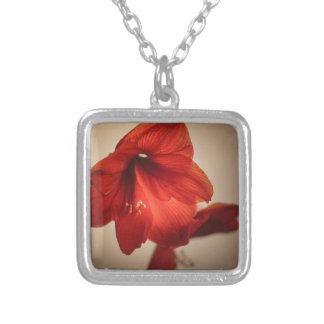 Two red amaryllis flowers silver plated necklace