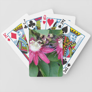 Two Red Passion Flowers Closeup Outdoors in Nature Bicycle Playing Cards