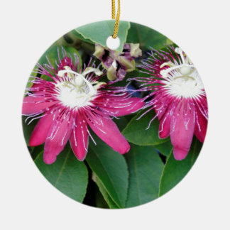 Two Red Passion Flowers Closeup Outdoors in Nature Ceramic Ornament