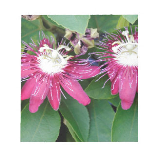 Two Red Passion Flowers Closeup Outdoors in Nature Notepad