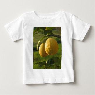 Two ripe lemons hanging on tree baby T-Shirt