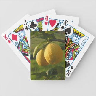Two ripe lemons hanging on tree bicycle playing cards