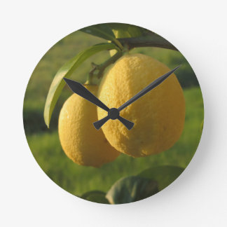 Two ripe lemons hanging on tree round clock