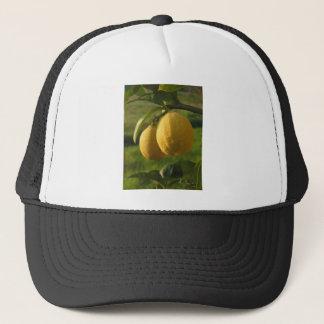 Two ripe lemons hanging on tree trucker hat