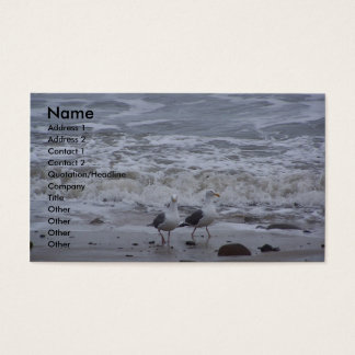 Two Seagulls Business Card