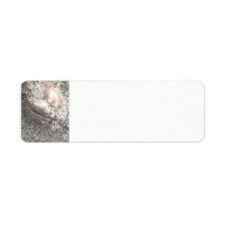 Two Seashells Return Address Label