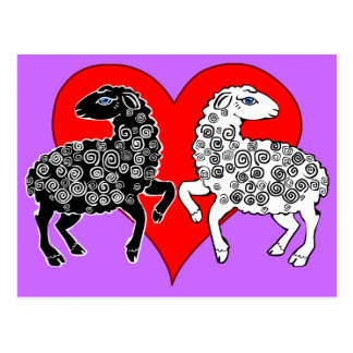 Two Sheep Black White Lambs Big Red Heart Postcard