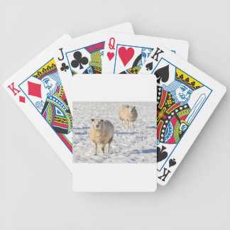 Two sheep standing in snow during winter poker deck