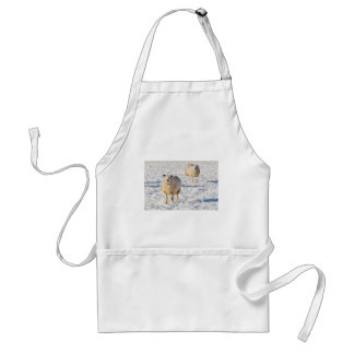 Two sheep standing in snow during winter standard apron