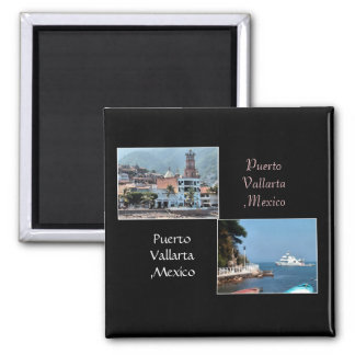 two shots from puerto vallarta magnet