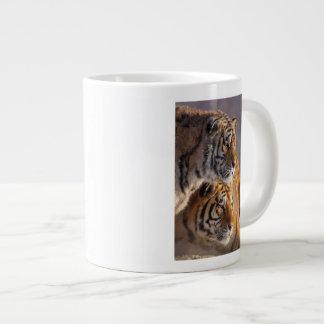 Two Siberian tigers together, China Large Coffee Mug