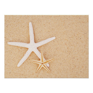Two Simple Starfish Poster