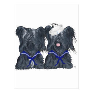 Two Skye Terrier Sailors Postcard