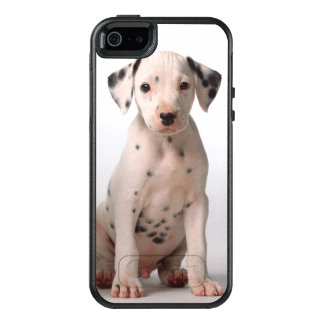 Two Small Black And White Dalmatian Puppies OtterBox iPhone 5/5s/SE Case