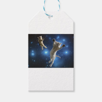 Two Space Cats Floating Around Galaxy Gift Tags