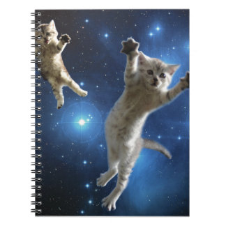 Two Space Cats Floating Around Galaxy Notebooks