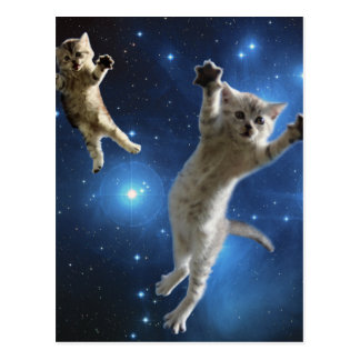 Two Space Cats Floating Around Galaxy Postcard