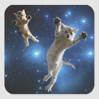 Two Space Cats Floating Around Galaxy Square Sticker