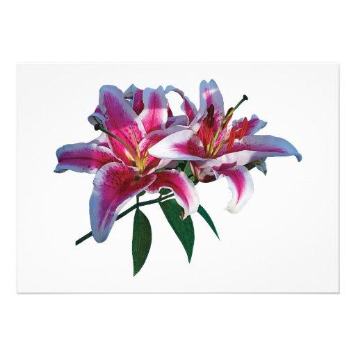Two Stargazer Lilies in Sunshine Invitation