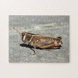 Two-Striped Grasshopper Photo Puzzle with Gift Box