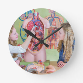 Two students learning model human body in biology. round clock